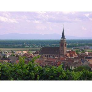 Fête du Gewurztraminer à Bergheim