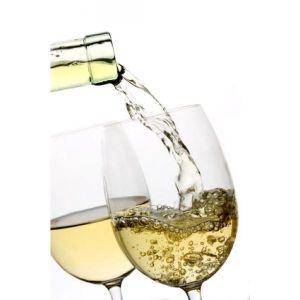 Dégustation de vins locaux lors de la Fête du Vin à Mittelbergheim