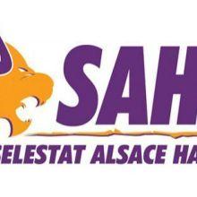 Finale retour Play-Offs 15/16 : Sélestat SAHB - Dijon