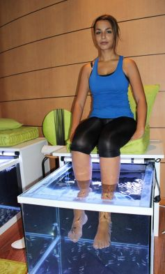 Selon les clients, la fish pedicure donne la sensation de chatouilles ou des caresses