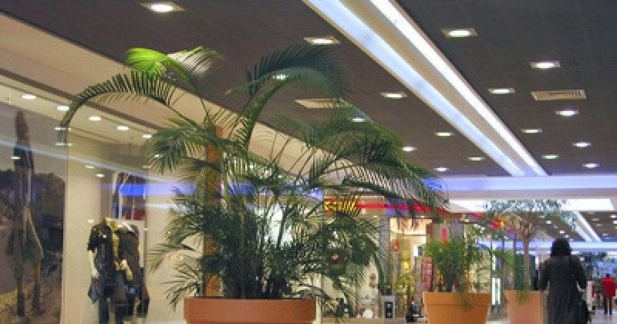 Centre commercial rivetoile strasbourg galerie et centre commercial - Centre commercial rivetoile strasbourg ...