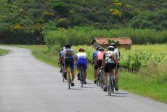 Pour organiser une balade à vélo à plusieurs, rien de mieux que de rejoindre un club de cyclisme !