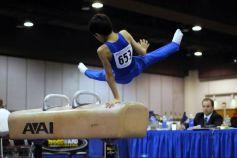 La gymnastique est un ensemble de disciplines qui ont toutes en commun souplesse et technique.