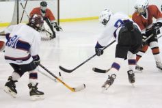 Hockey sur glace D1