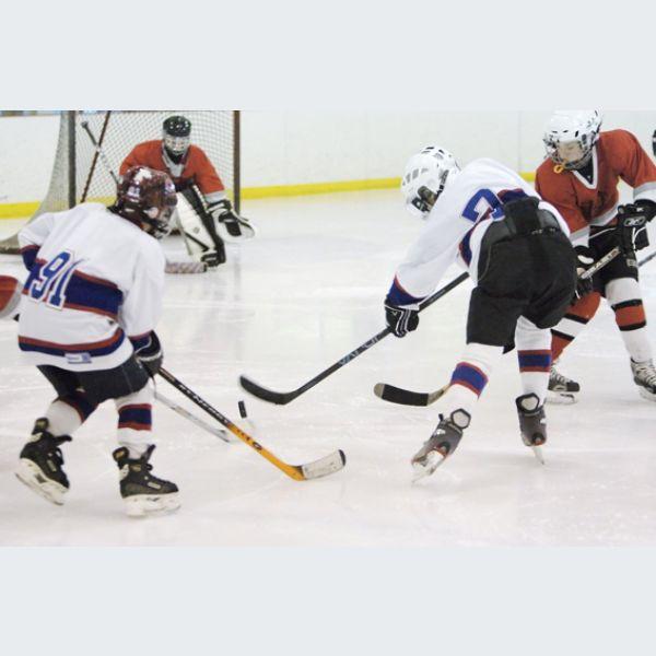 hockey sur glace d2