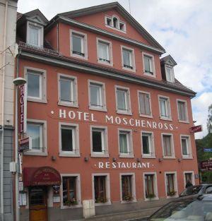 Hotel le Moschenross à Thann