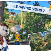5 trucs que vous ignorez peut-être sur Europa-Park