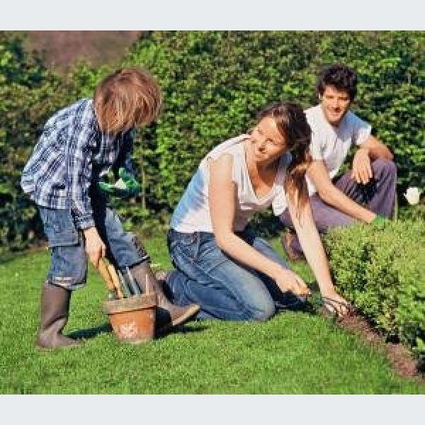Le guide jardin mois par mois dans le haut rhin for Jardinier 78