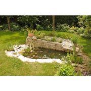 Jardin : à la Sainte-Catherine, tout prend racine