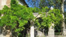 Jardin des sciences / Planétarium-muséum-jardin botanique