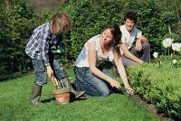 http://www.jds.fr/medias/image/jardinage-plantes-enfants-famille-18223