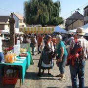 Journée de découverte des Goûts et Saveurs Bio à Waldolwisheim