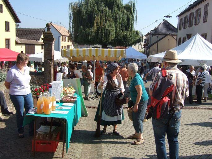 Journée de découverte des Goûts et Saveurs Bio à Waldowisheim