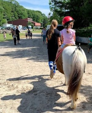 La journée du Cheval, c\'est l\'occasion de s\'initier à l\'équitation
