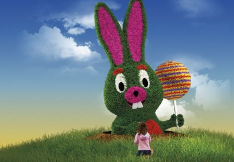 Le lapin sera la mascotte de l\'édition 2016 !
