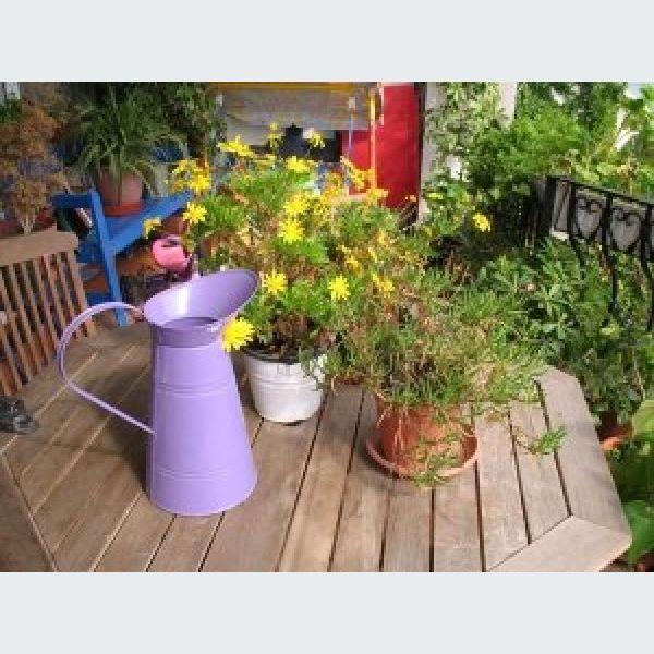 Juin l 39 entretien du jardin mulhouse colmar haut rhin 68 for Entretien jardin l union