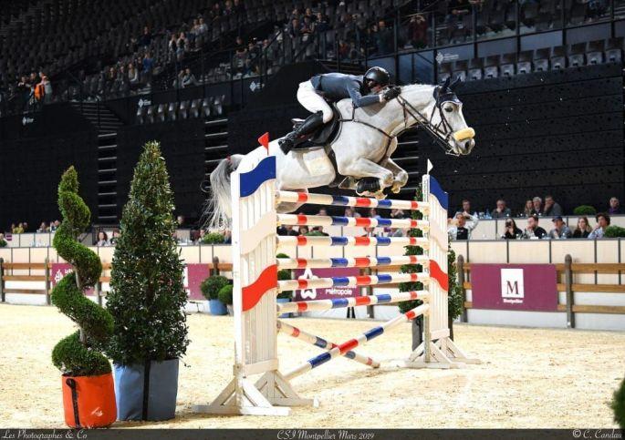 Jumping International de Montpellier