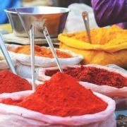 L\'Inde aux 1000 couleurs dans le regard des photographes