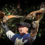La chasse, entre noblesse et tradition !