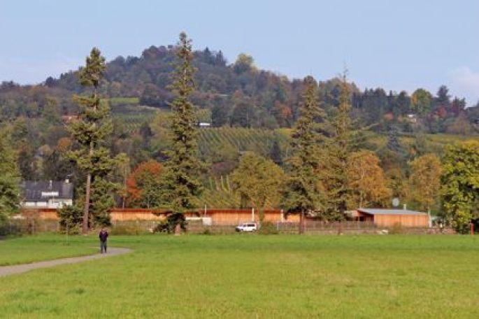 La nature à Riehen