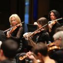 Concert Symphonique n°8 : La plaisanterie