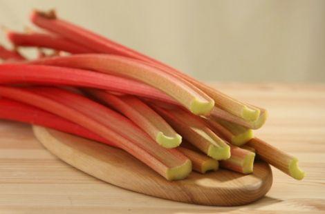 Tout savoir sur la rhubarbe