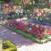 Les jardins remarquables en Alsace