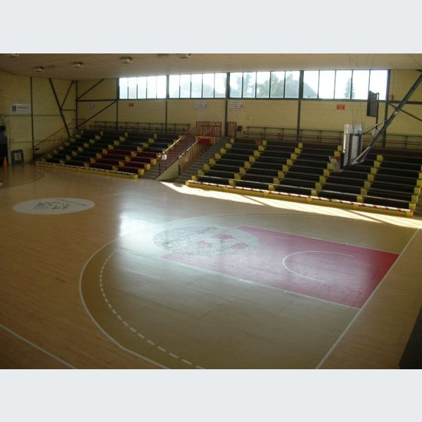 SIG équipe féminine amateur de basket à Strasbourg Illkirch ... 1229878f2531