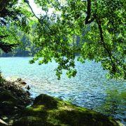 Top 5 des plans d\'eau où se baigner