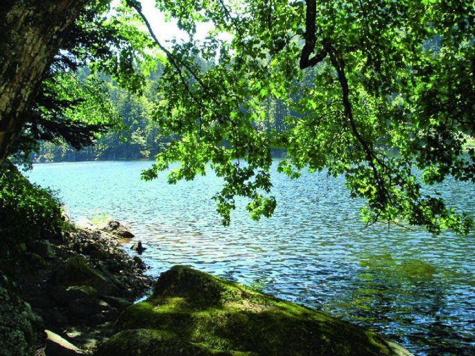 Le lac de Michelbach