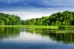 Les lacs et réserves d\'eau Alsace vous réservent calme et détente...