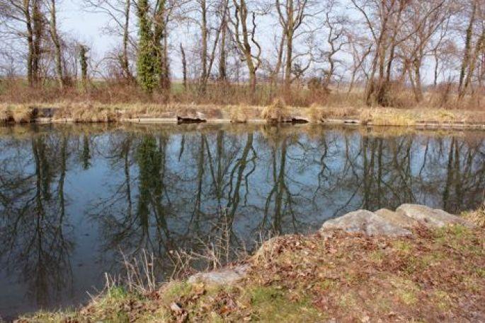 Le canal de Colmar