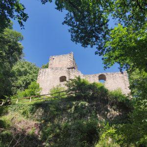 Le chateau du Hagueneck se découpant dans la forêt