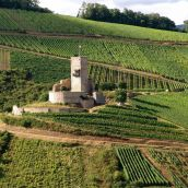 Le château du Wineck à Katzenthal