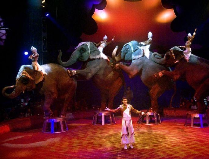 Pile ou Face : spectacle de la tournée 2007 du Cirque Gruss
