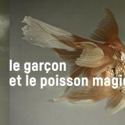 Le Garçon et le poisson magique