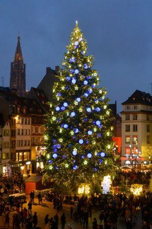 Le Grand Sapin de Noël 2020 - place Kléber à Strasbourg
