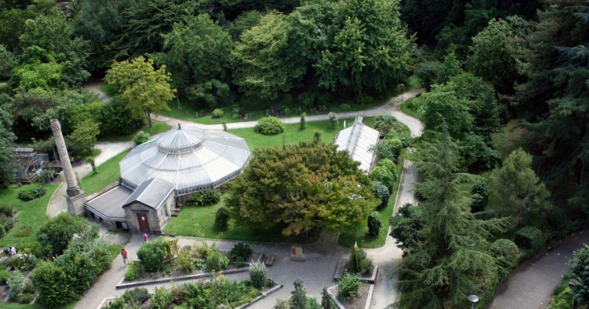 Jardin botanique de strasbourg plantes et arbres rares espace vert - Deco jardin mersch strasbourg ...