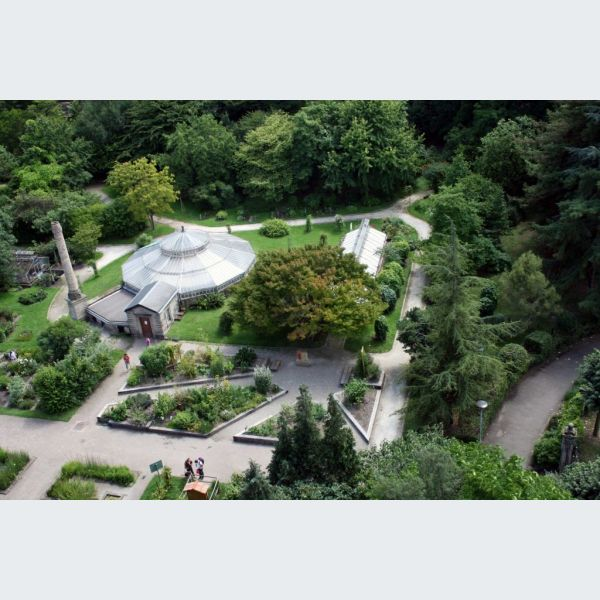 Exposition orchid es du japon strasbourg jardin for Jardin botanique ouverture 2015