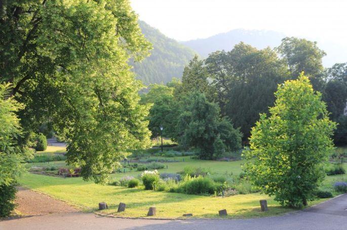 Le jardin de la Villa Burrus