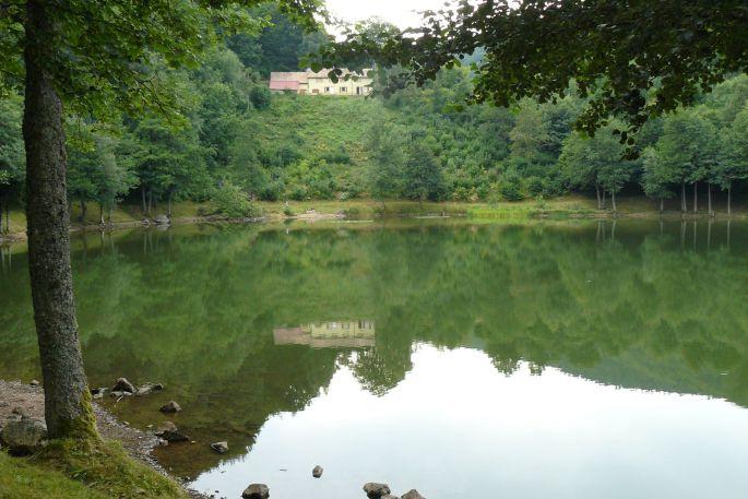 Les pierres précieuses du lac du Lachtelweiher