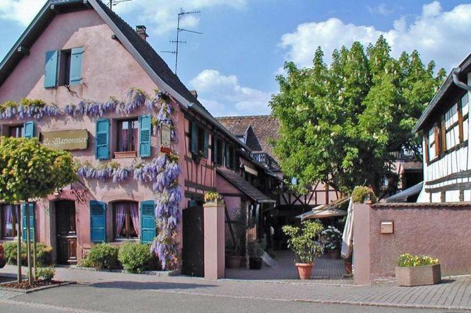 Le Marronnier à Stutzheim