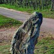 5 choses à savoir sur la  colline du Bollenberg