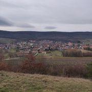 Découverte de la colline du Bollenberg