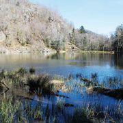 Les lacs de Neuweiher par le chemin de pierres