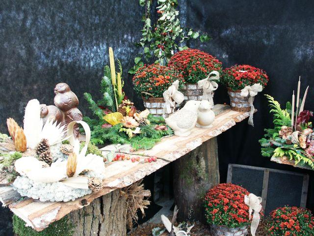 point vert hochstatt horticulture fleurs plantes maison ...