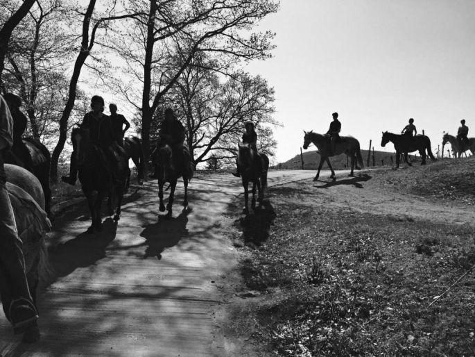 Le ranch du Laubenrain, au coeur de la nature