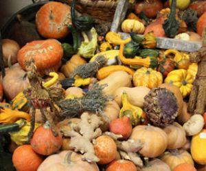 Le renouveau annoncé des vieux légumes