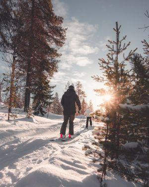 Le ski nordique: un sport d'hiver en plein essor