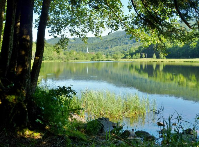 Panorama grandiose autour du lac de Sewen